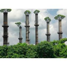 Проект нормативов предельно допустимых выбросов