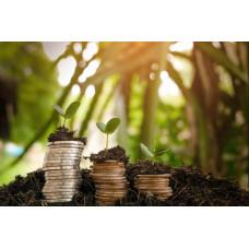 Расчет суммы экологического сбора